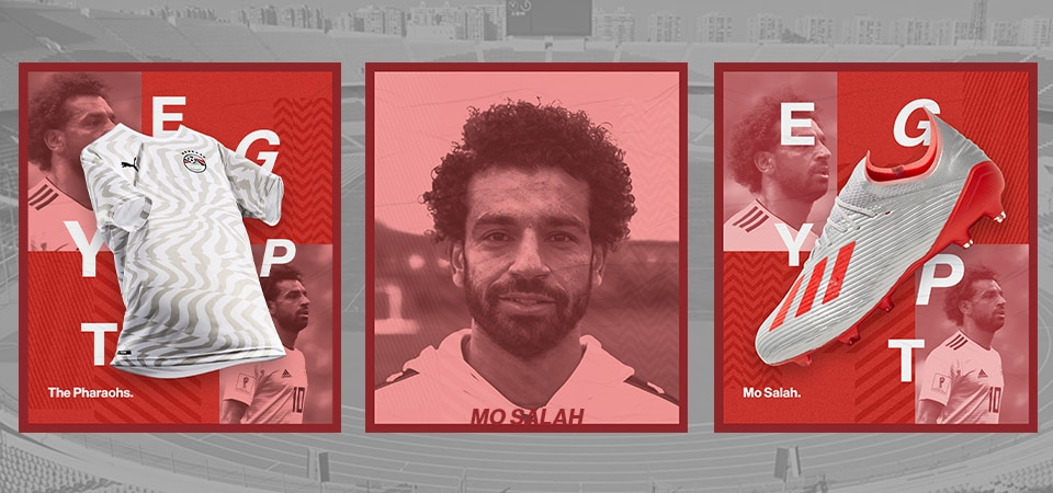 ACON | Egypt | NL | 20.06